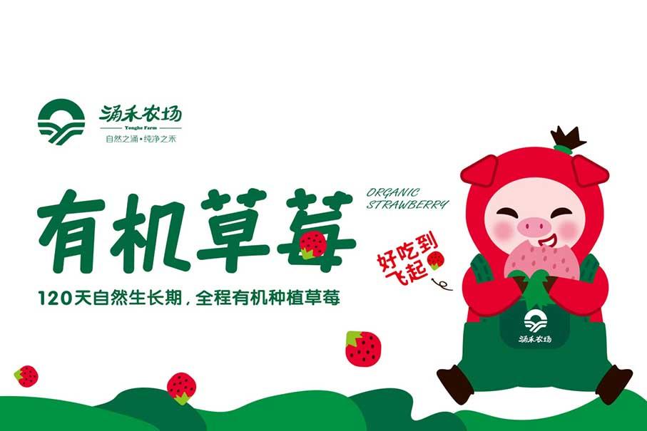 涌禾农场有机草莓IP品牌策划